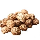 八仙姑花菇,香菇